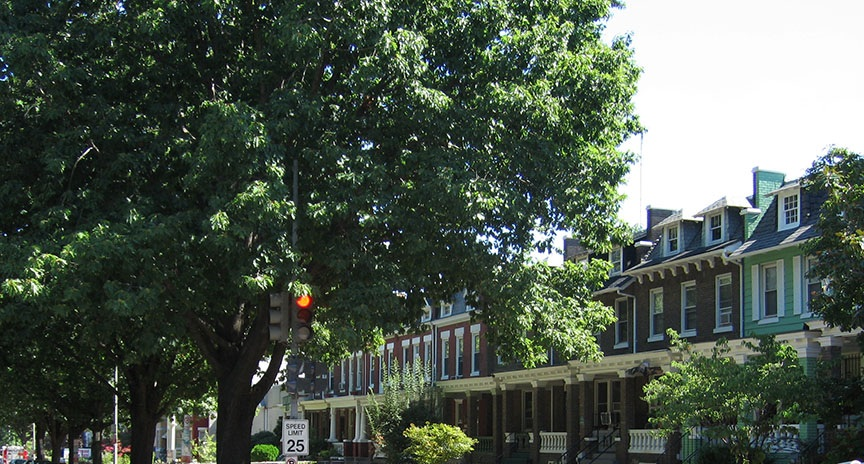 Brick townhouses stand down a tree lined street.
