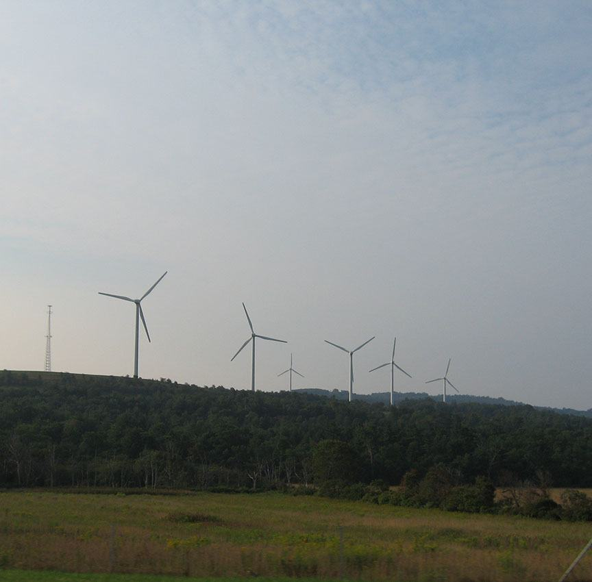 Wind turbines stand in a row, tall above the trees surrounding them, all are in motion